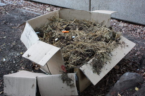 A few cardboard boxes give the compost structure while it starts to rot